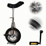 Indy 12 inch Trainer Unicycle