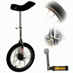 Indy 16 inch Trainer Unicycle - Chrome